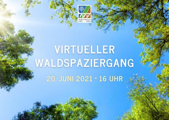 Virtueller Waldspaziergang mit dem JNF-KKL